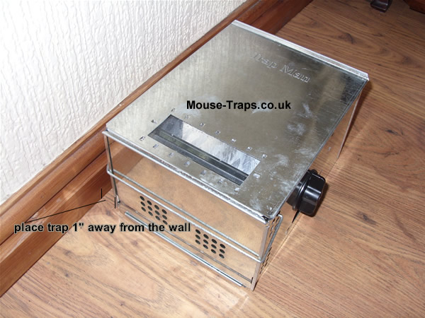 Wind up mouse trap traps suppliers of live